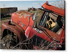 Acrylic Print featuring the photograph Loadstar No More by PJ Boylan