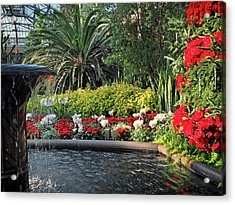 Acrylic Print featuring the photograph Christmas Colors In Plants by Bill Swartwout Fine Art Photography