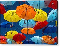 Lots Of Umbrellas Coloring The Sky In Acrylic Print