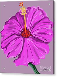 Lovely Pink Hibiscus Acrylic Print