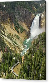 Lower Falls On The Yellowstone River Acrylic Print by Neale Clark / Robertharding