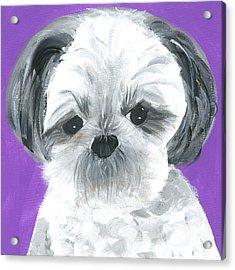 Lulu Acrylic Print