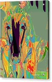 Lungta Windhorse No 6 Acrylic Print