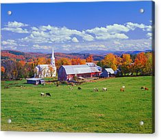 Lush Autumn Countryside In Vermont With Acrylic Print