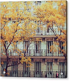 Madrid Facade In Late Autumn Acrylic Print by Julia Davila-lampe