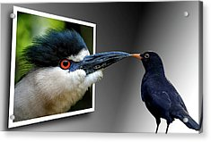 Acrylic Print featuring the photograph Magic Mirror On The Wall by Bill Swartwout Fine Art Photography