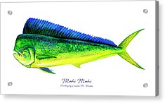 Mahi Mahi Acrylic Print
