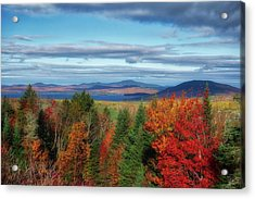 Maine Fall Foliage Acrylic Print