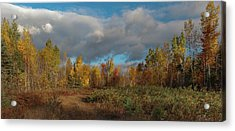 Acrylic Print featuring the photograph Maine Wilderness Color 2 by Rick Hartigan
