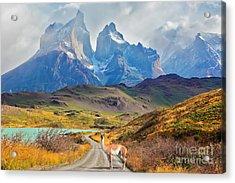 Majestic Peaks Of Los Kuernos Over Lake Acrylic Print