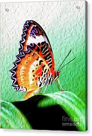 Acrylic Print featuring the digital art  Malay Lacewing Butterfly II by Kenneth Montgomery