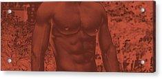 Male Torso Acrylic Print