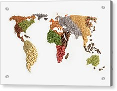 Map Of World Made Of Various Seeds Acrylic Print by Imagemore Co, Ltd.