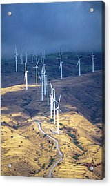 March Of The Windmills Acrylic Print