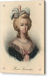 Marie Antoinette Acrylic Print by Hulton Archive