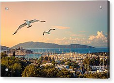 Marine Landscape With Yachts In A Acrylic Print