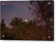 Marvelous Moonrise Acrylic Print