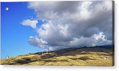 Maui Windmills Acrylic Print