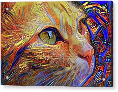 Max The Ginger Cat Acrylic Print