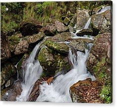 Medium Cascade Acrylic Print