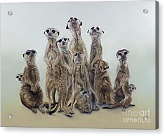 Meerkat Mob, Sun Angels, 2013  Acrylic  Acrylic Print