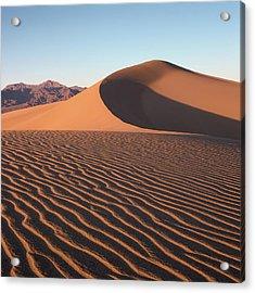 Mesquite Dunes 1-sq Acrylic Print