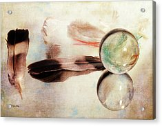Acrylic Print featuring the photograph Messages From Above by Randi Grace Nilsberg