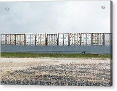Miami Topographics 15 Acrylic Print
