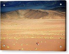 Middle East,jordan,man Walking In A Acrylic Print by Frédéric Soreau