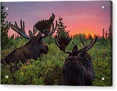 Mighty Giants Enjoy A Sunrise Breakfast Acrylic Print
