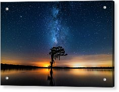 Acrylic Print featuring the photograph Milky Way Swamp by Andy Crawford