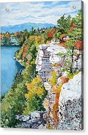 Minnewaska Fall Cliff Acrylic Print by Mira Fink