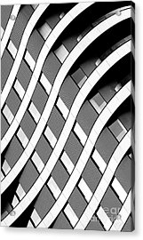 Modern Curved Lines Acrylic Print
