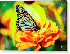 Monarch Butterfly Van Gogh Style Acrylic Print