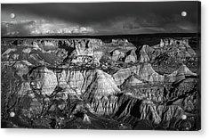Monochrome Evening Acrylic Print