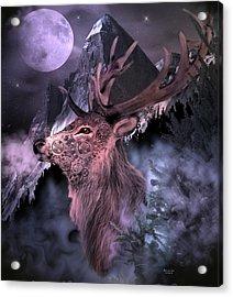 Moonlight Buck Acrylic Print