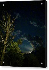Moonlight In The Trees Acrylic Print