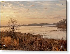 Acrylic Print featuring the photograph Morning At Boombay Hook by Kristia Adams