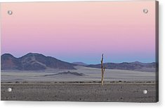 Morning In The Desert Acrylic Print