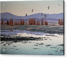 Acrylic Print featuring the painting Morning Sprig by Peter Mathios