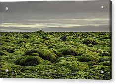Moss Covered Lava Field On Route 1 Acrylic Print