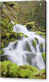 Acrylic Print featuring the photograph Mossy Falls by Nicole Young