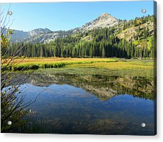 Mount Millicent Reflection Acrylic Print