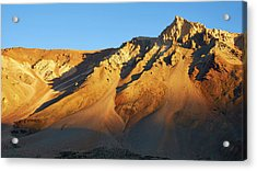 Acrylic Print featuring the photograph Mountain Gold by Whitney Goodey