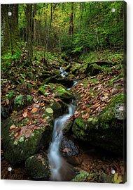 Mountain Stream - Blue Ridge Parkway Acrylic Print