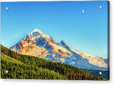 Acrylic Print featuring the photograph Mt. Hood From Lolo Pass Mt. Hood National Forest by Dee Browning