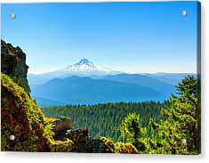 Acrylic Print featuring the photograph Mt Hood Seen From Beyond by Dee Browning