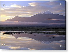 Mt.kilimanjaro Sunrise Amboseli Kenya Acrylic Print by Stan Osolinski