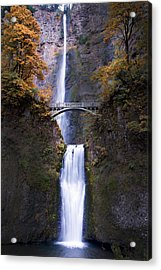 Acrylic Print featuring the photograph Multnomah Falls Autumn Colors by Rospotte Photography