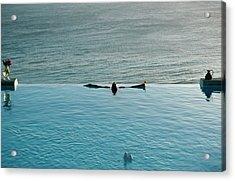 Mustique Pool Acrylic Print by Slim Aarons